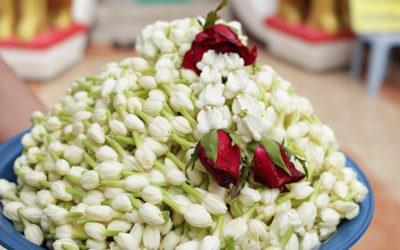 ジャスミンの花でいっぱいのチェンマイのお寺 ~ワット・プラタート・ドイカム~